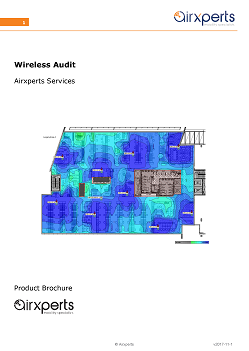 Wireless Audit Services