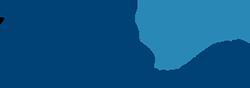 Delv Logo